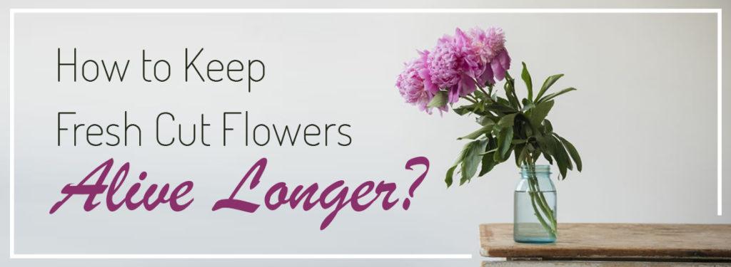 Professional florist in Melbourne